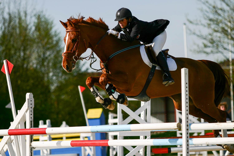 Cheval de concours sautant un obstacle