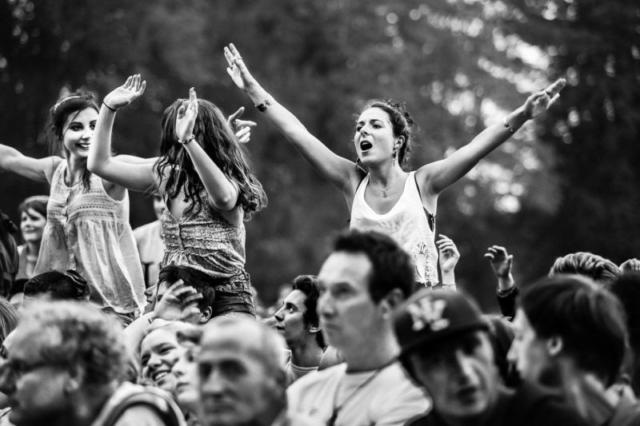 Fans de Broussaï au catalpa